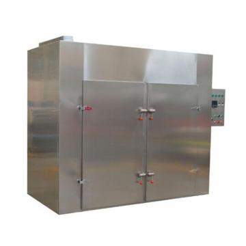 304 Stainless Steel Vegetable/Fruit Dryer and Food Drying Machine