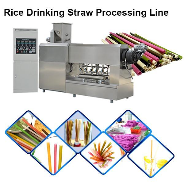 Stainless Steel Food Grade Edible Straws Biodegradable Rice Tapioca Straw Making Machine