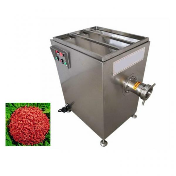Electric Meat Grinder with Ce/BV